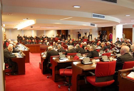 111º Reunión de la Asamblea Plenaria
